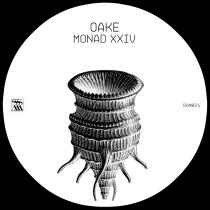 monad-xxiv
